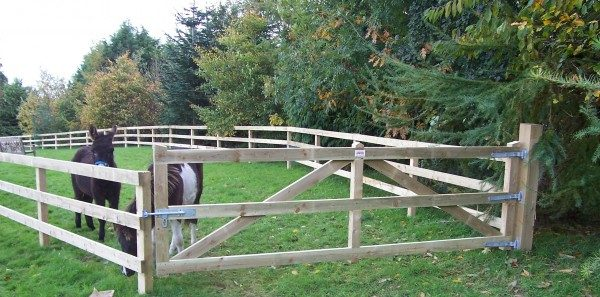 Field gates made of wood with a cow